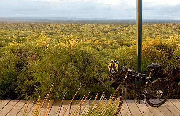 Bike Loop Track