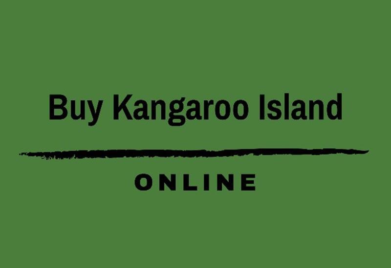 KI Online 800x550